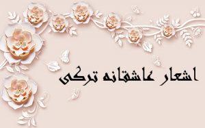 romantic2 turkish1 poems 300x187 اشعار ترکی عاشقانه به همراه ترجمه فارسی